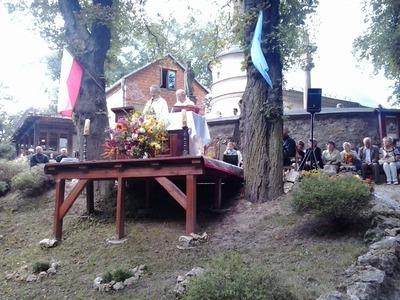 Zdjęcia z katalogu: Uroczystość Wniebowzięcia NMP 15.08.2013r